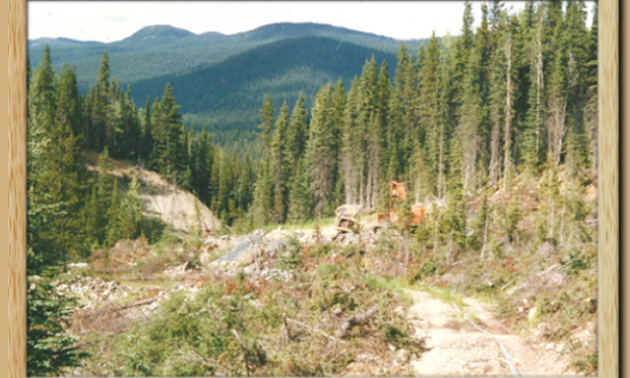 Windsor gold mining and exploration inc