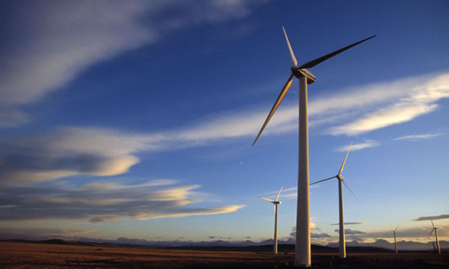 A view of wind turbines