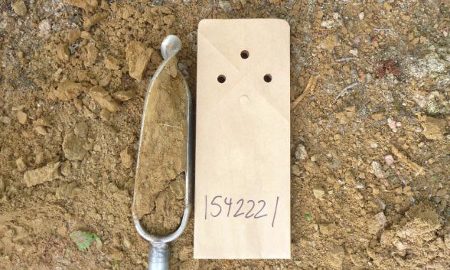 A soil sampling.
