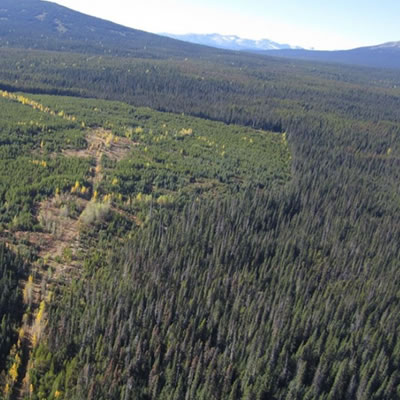 An aerial view of the Silver Vista property near Smithers, B.C.