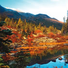 A landscape featuring a small body of water surrounded by fall-coloured vegetation with mountains in background.