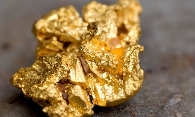 A sample of gold from the Dufferin Mine in Nova Scotia, Canada.