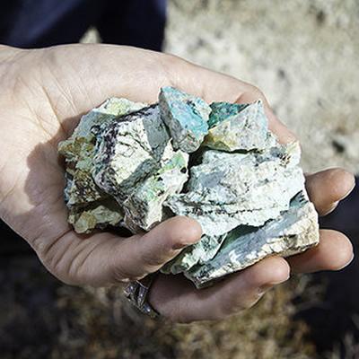 A handful of copper.