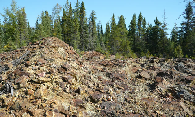 Marshall Lake VMS Copper Gold Project.