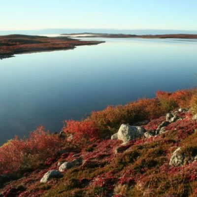The Providence Greenstone Belt showing its fall colours.