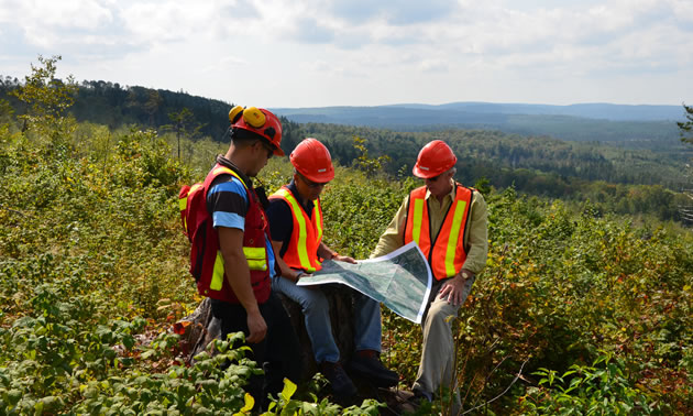 The Sisson Project is located about 100 kilometres from Fredericton, New Brunswick. Pictured are three workers are looking at a map on a brushy hillside.