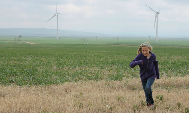 Paula's children were raised learning about renewables. Not only does Paula guide companies through renewable projects, but she has contributed to renewable education plans in Alberta's schools.