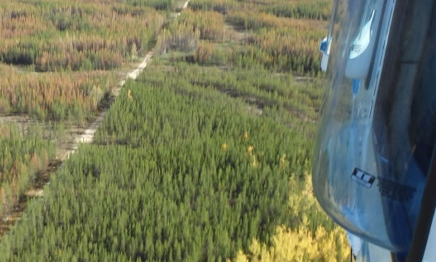The 97-kilometre Tlicho Road connects the community of Whatì to the territorial highway system in the Northwest Territories.