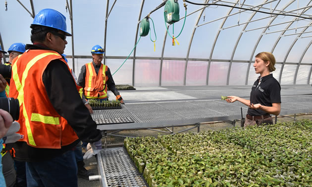 Jessica Dyczko, a reclamation coordinator at Victor Mine, answers questions about the mine's on-site greenhouse.
