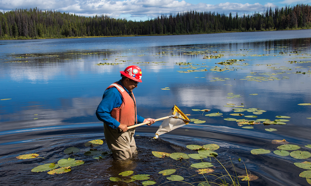Man standing in a lake holding a fishing net.