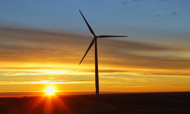 Ikea has purchased another wind farm near Drumheller, Alberta, to offset their energy consumption across all of Canada's stores.