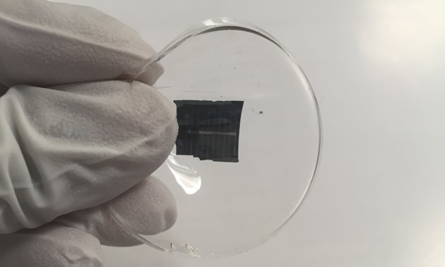 Picture of gloved hand, displaying a piece of glass with a wafer-thin piece of silicon on it.