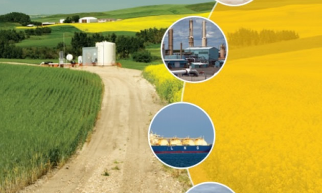 Cover of report - Roadmap to Recovery: Reviving Alberta's Natural Gas Industry.