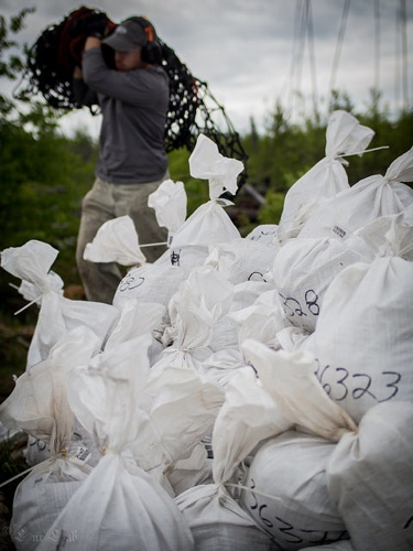 A pile of white sample bags in the forground, the backround is a little blurred and shows a man carrying a bag on his shoulder towards the pile.